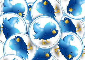 twitter, il famoso uccellino